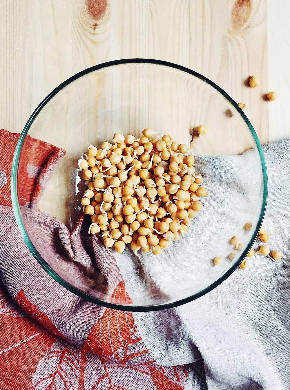 Чем полезны пророщенные зерна и семена, как их проращивать и употреблять