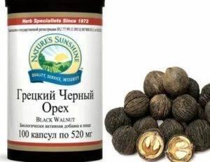 Настойка черного ореха: польза и вред, применение