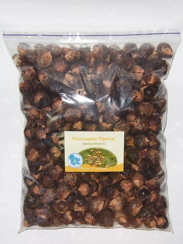 Мыльные орехи - полезные свойства и все все способы применения