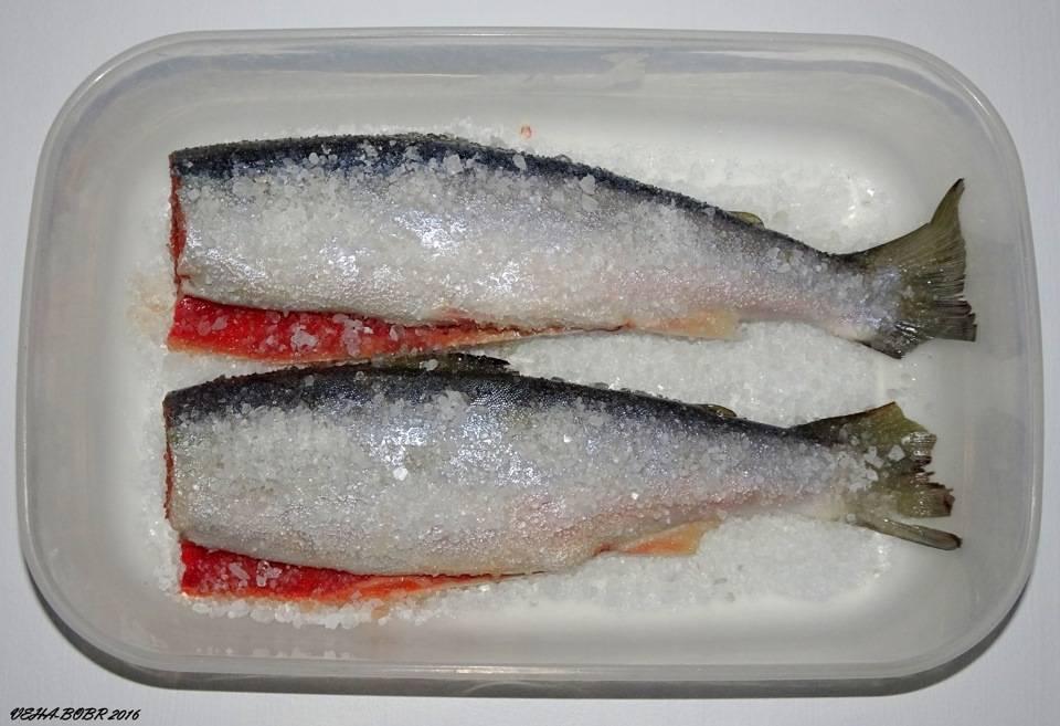 Как замариновать речную рыбу