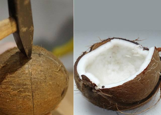 Как хранить кокосовую стружку