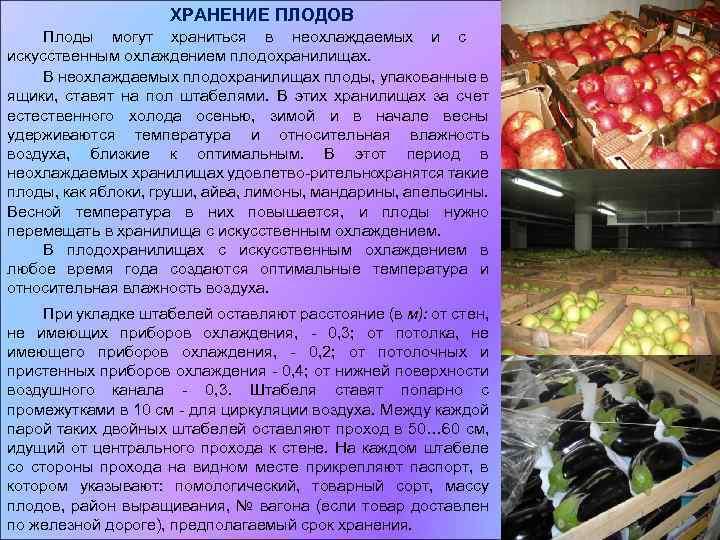 Хранение овощей и фруктов при продаже