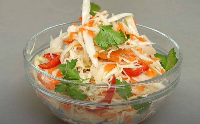 Маринованная капуста быстрого приготовления – минутное дело! разные рецепты маринованной капусты быстрого приготовления