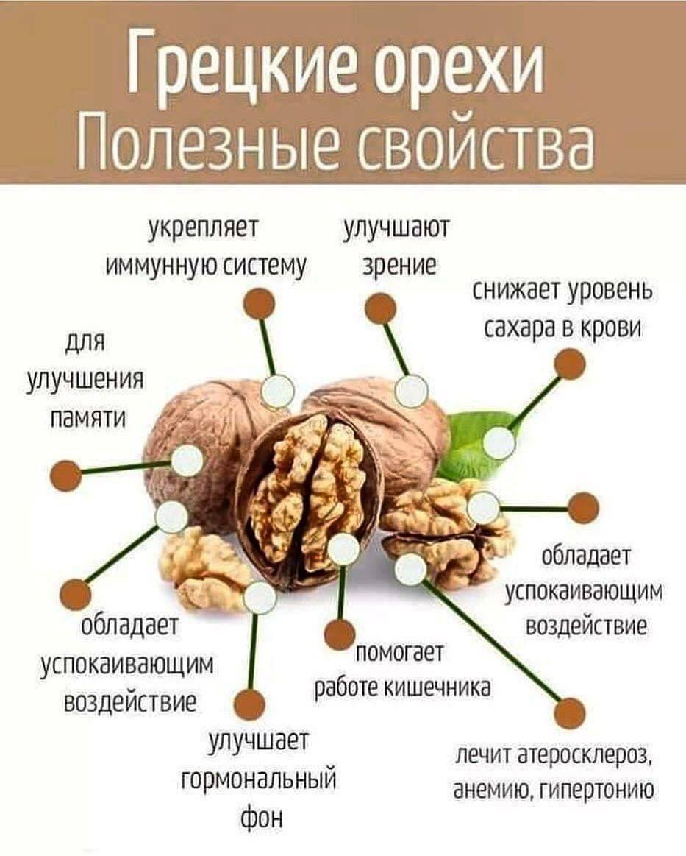 Описание грецкого ореха сорта идеал - секреты садоводов