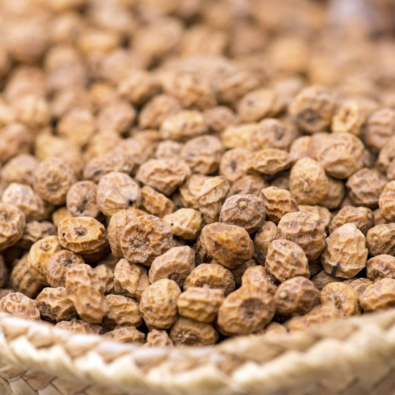 Ловля карпа на орехи – подробное руководство (терри херн & гари бейз) - carpfishing