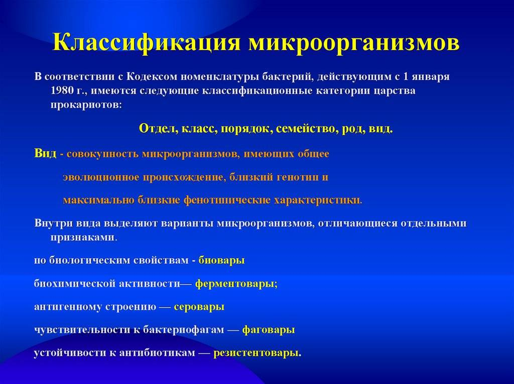Классификация микроорганизмов. основы морфологии бактерий. лекция. биология. 2013-10-12