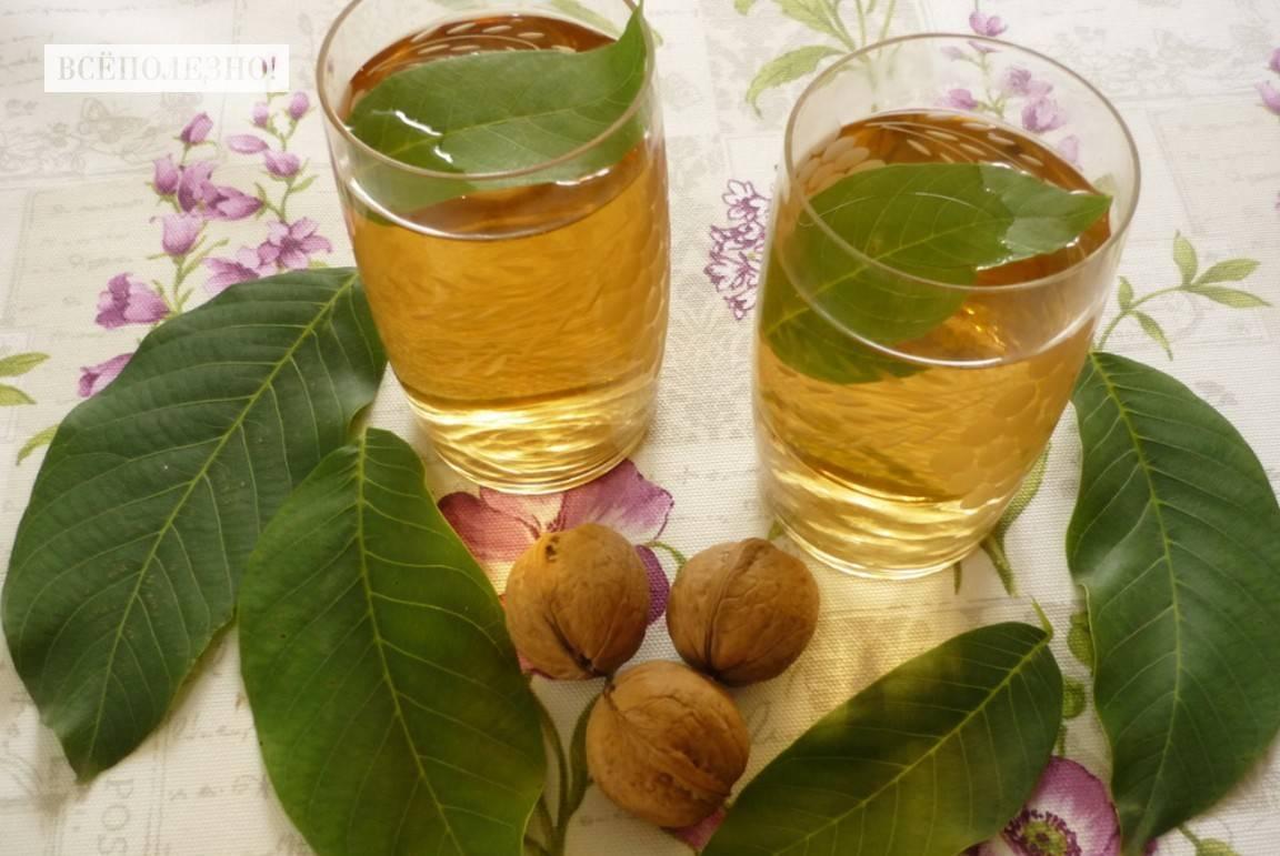 Настойка на грецких орехах: лечебные свойства, применение