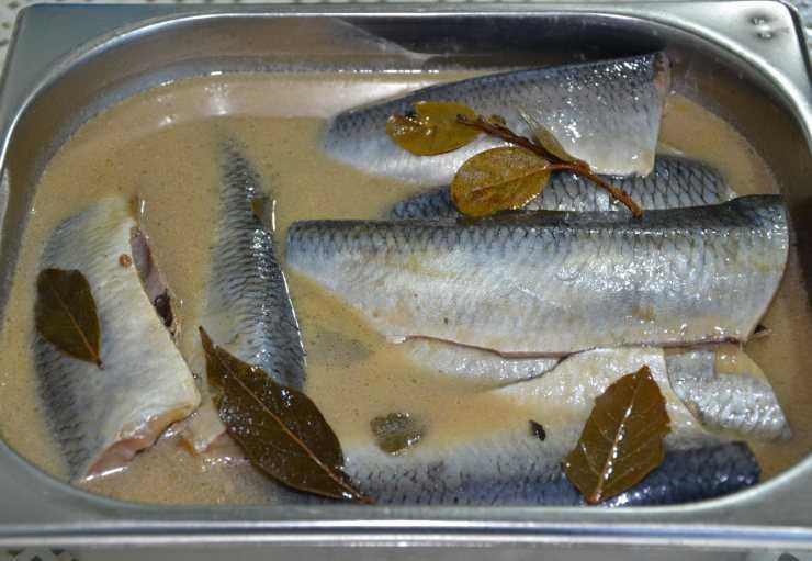 Как солить рыбу в домашних условиях – пошаговый рецепт с фото