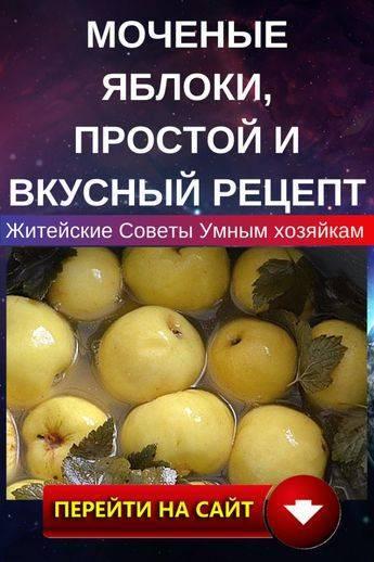 Моченые яблоки - как сделать по простым рецептам в банке или бочке целиком в домашних услових