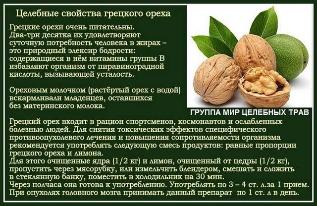 """Польза и вред грецких орехов для мозга, волос, сердца, печени – портал """"стань лучше"""""""