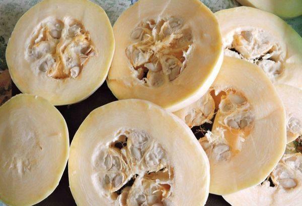 Кабачковые семечки: польза и вред для организма женщин и мужчин