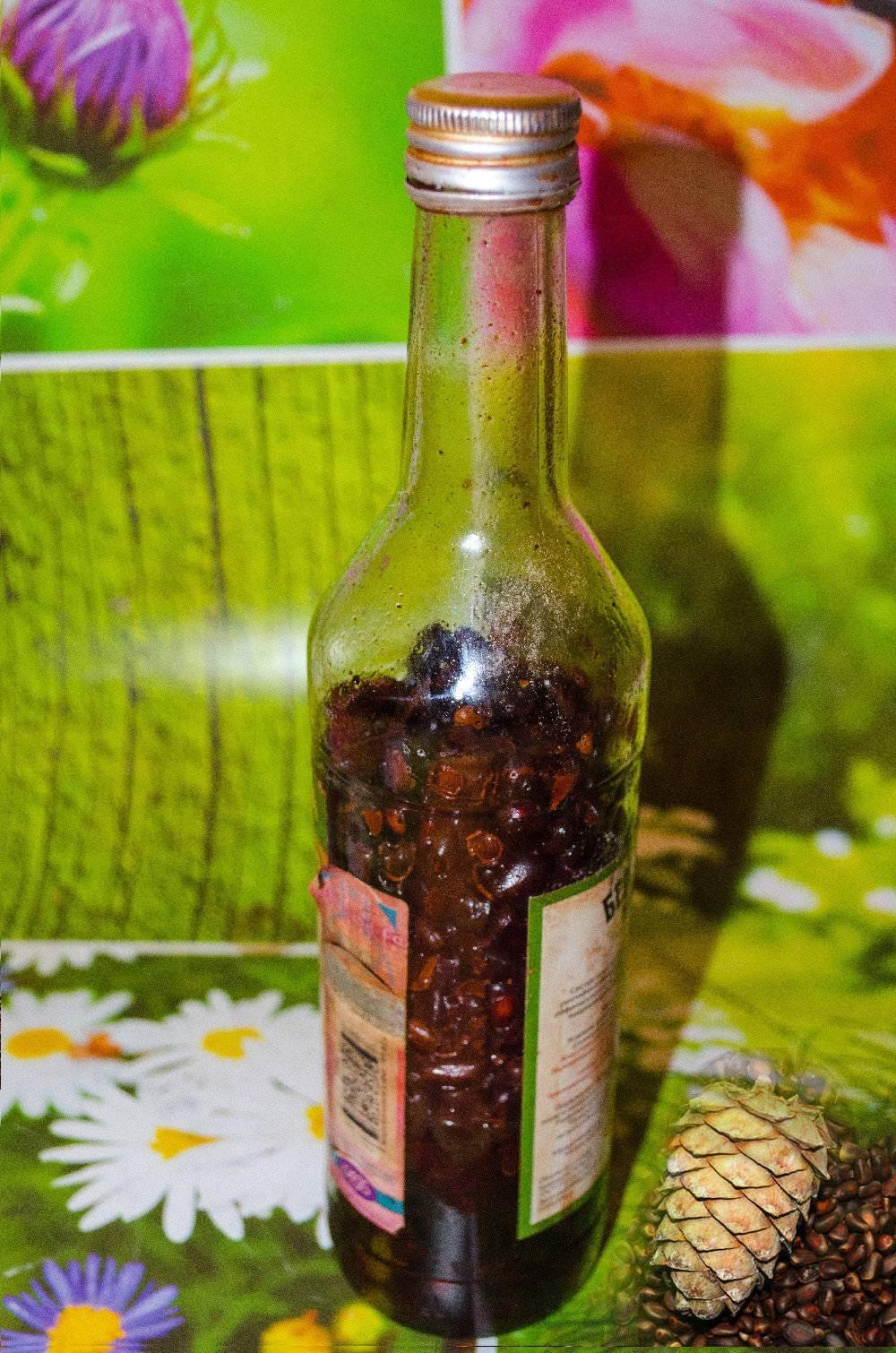 Кедровая настойка: рецепт приготовления, лечебные свойства и применение