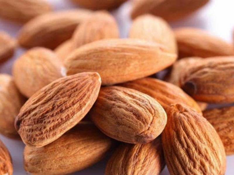Миндальный орех — польза и вред, свойства и тонкости применения   здорова и красива