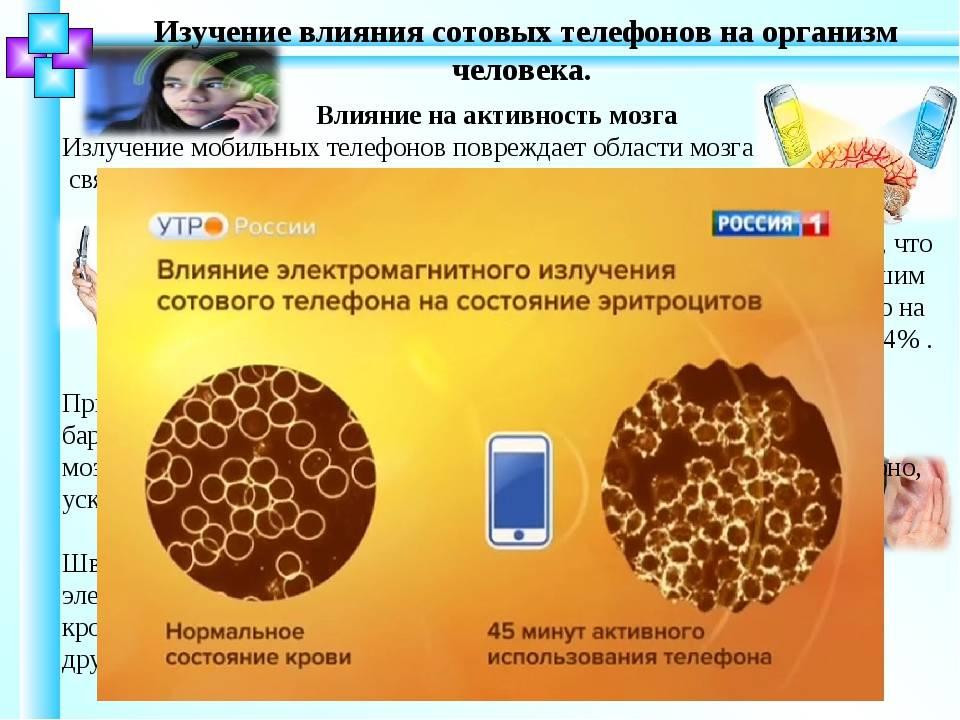 Вирусные болезни зерновых колосовых и методы борьбы с ними