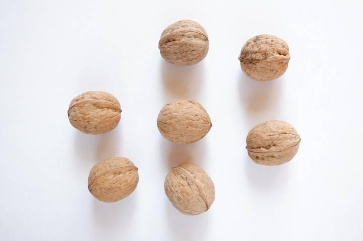 Виды и сорта грецкого ореха с фото: морозостойкие, латеральные, для подмосковья