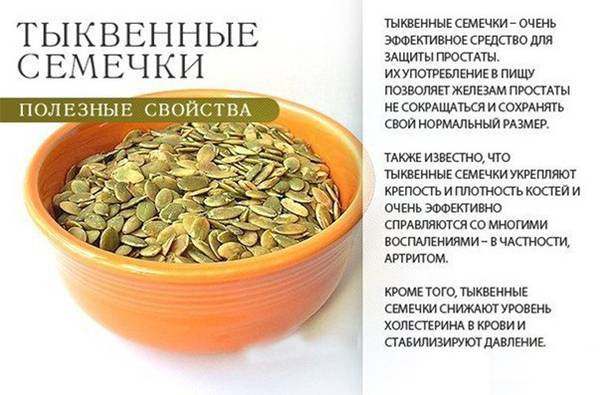 Семена тыквы: польза и вред для мужского организма, как правильно принимать и какова суточная норма