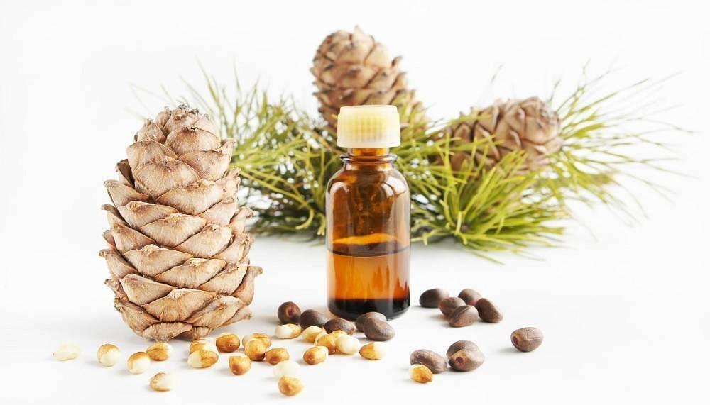 Эфирное масло кедра: лечебные свойства и применение для лечения болезней