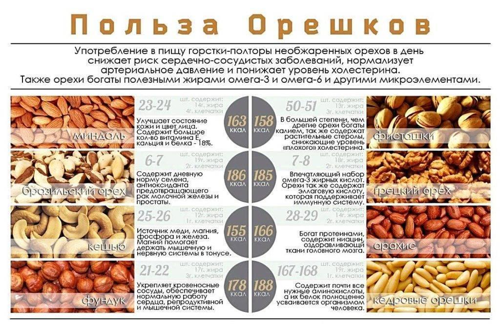 Запор и орехи: как они связаны