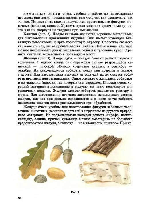 Дубовые листья полезные свойства и противопоказания