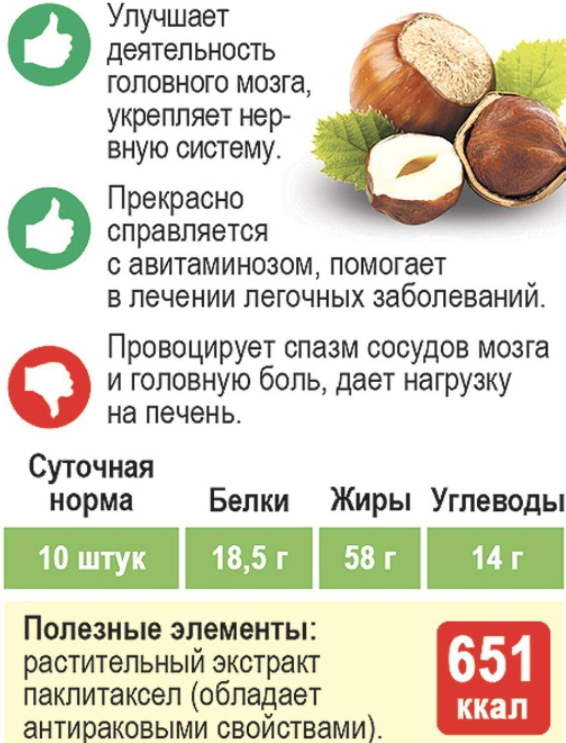 Орех кола: полезные свойства, вред, состав | food and health