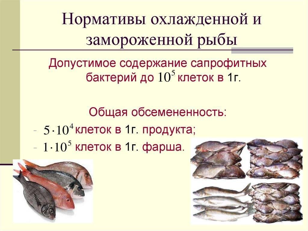 Способы сохранения качества рыбы [1986 быкова в.м., белова з.и. - справочник по холодильной обработке рыбы]