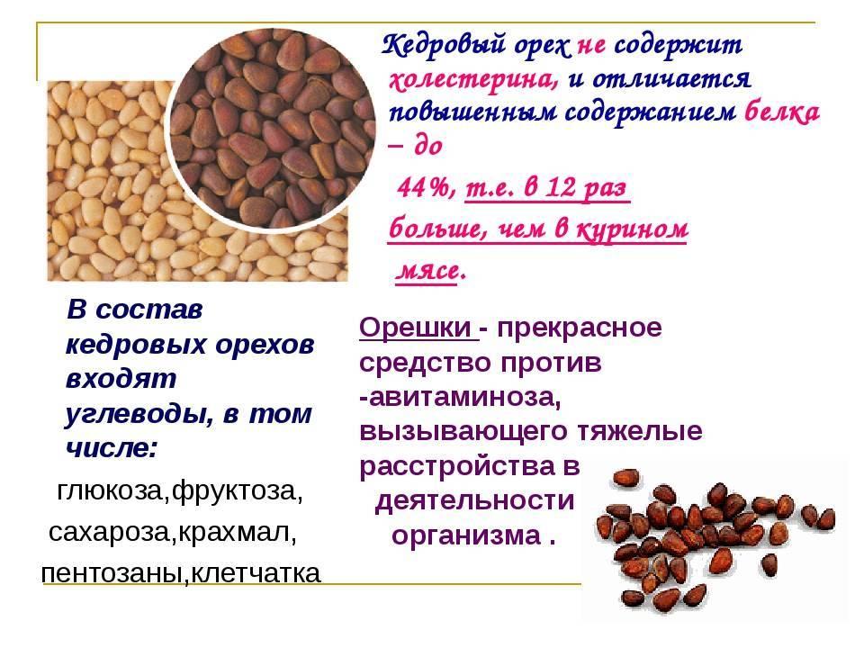 Сколько орехов можно съедать в день: грецких, кешью, кедровые, фисташки, арахис, миндаль, фундук