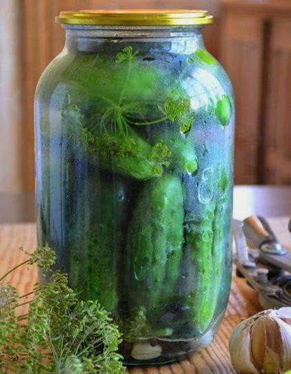 Консервированные огурцы на зиму – 8 очень вкусных рецептов хрустящих огурцов с пошаговыми фото