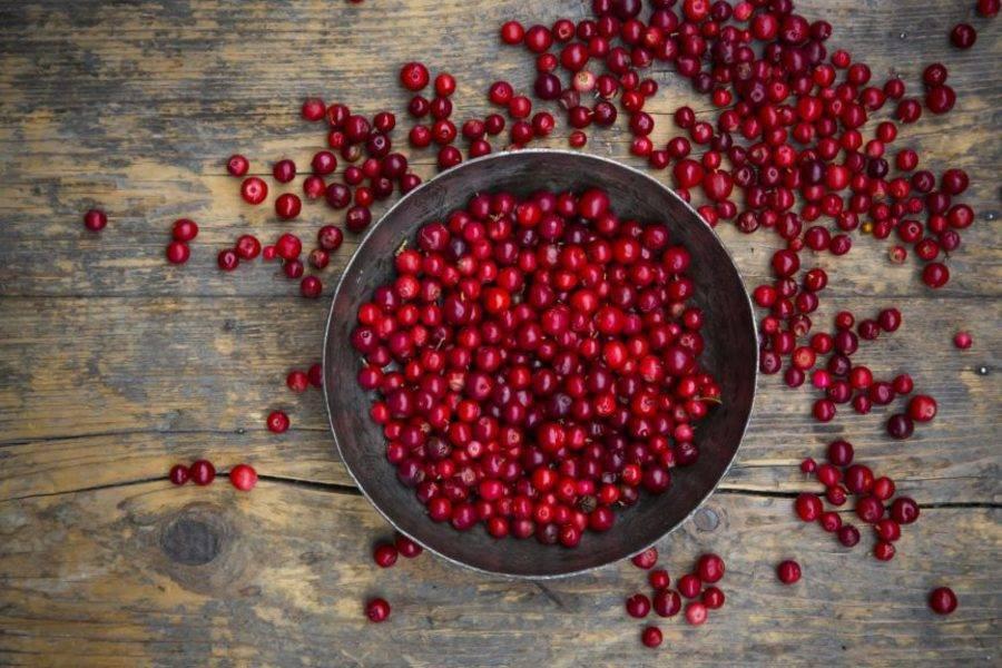 Чем полезна клюква для организма человека, состав, калорийность, рецепты
