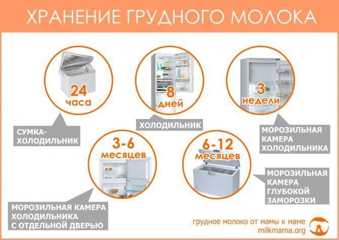 Срок годности сливок, условия хранения в домашних условиях и в холодильнике, значение вида продукта