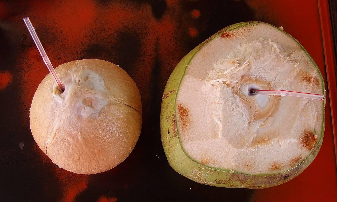 Как правильно выбрать спелый кокос в магазине - орех эксперт