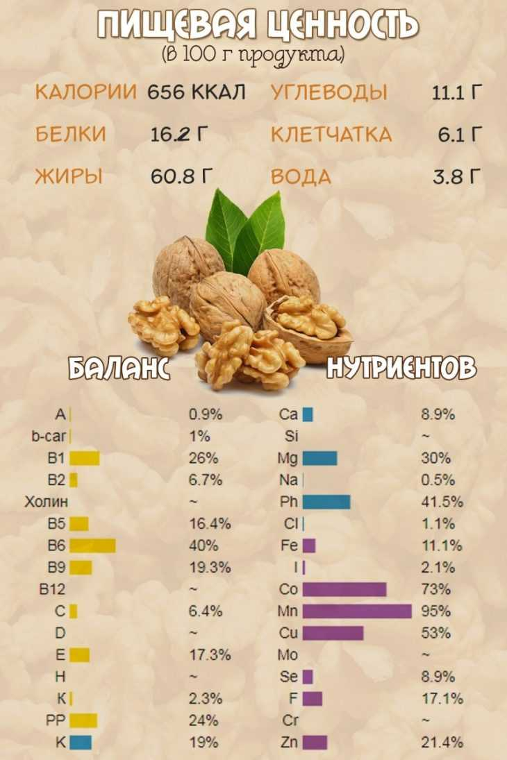 Walnuts broker: как получить белое ядро грецкого ореха
