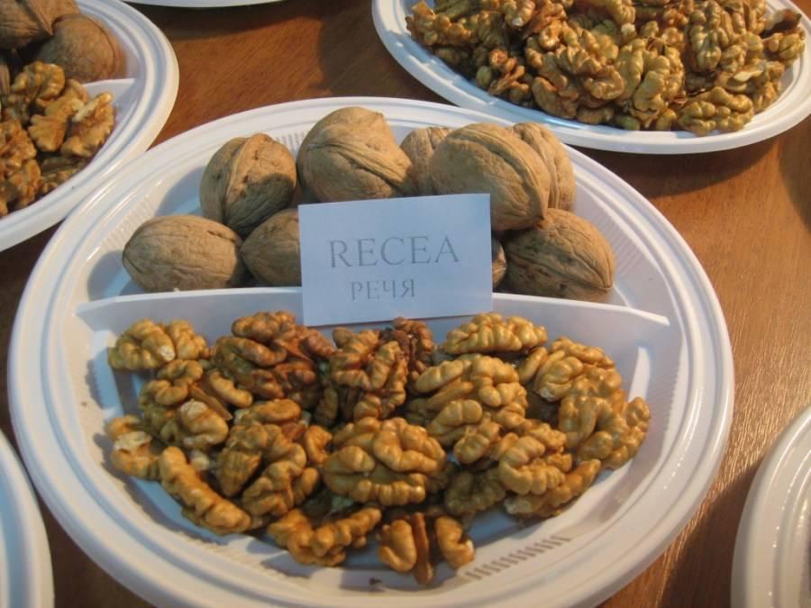 Фото с описанием сортов грецкого ореха