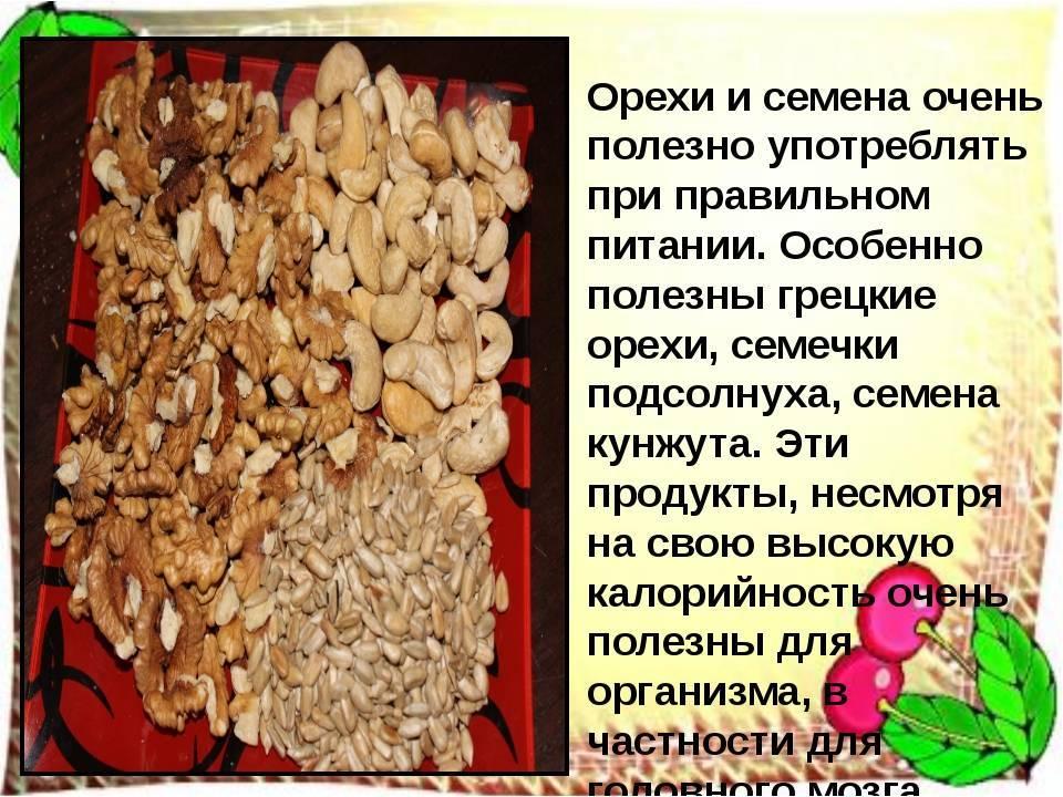 Польза кедровых орехов для здоровья