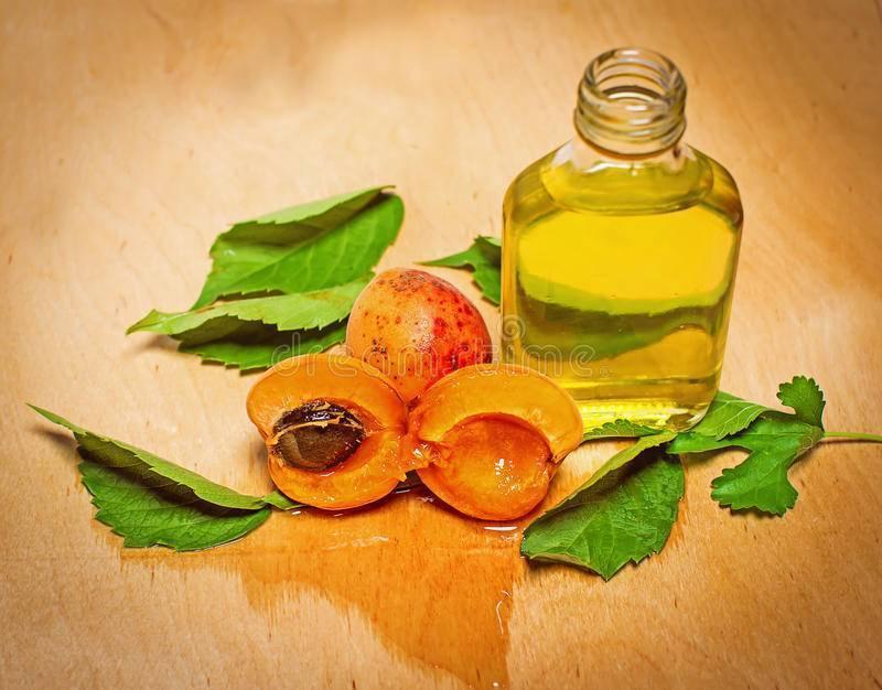 Масло абрикосовых косточек - полезные и опасные свойства