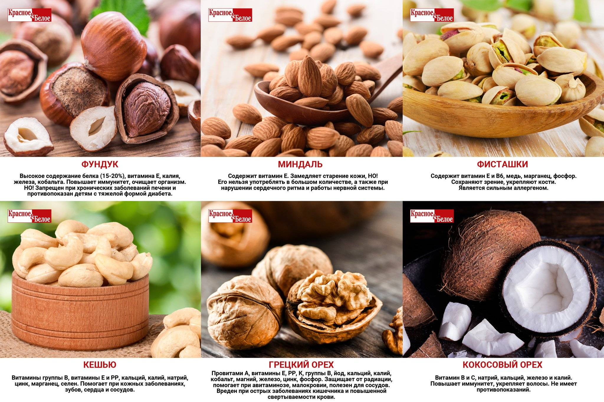 Чем полезен грецкий орех для мужчин: польза и вред для организма чем полезен грецкий орех для мужчин: польза и вред для организма