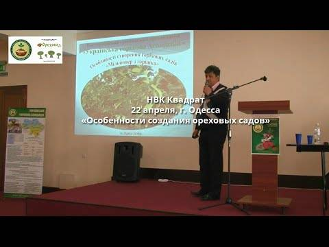 НВК Квадрат: Особенности создания ореховых садов