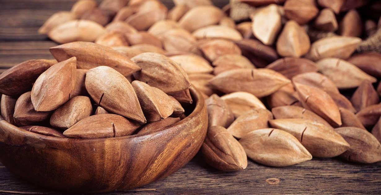 Орехи пинии — полезная и вкусная замена кедровых
