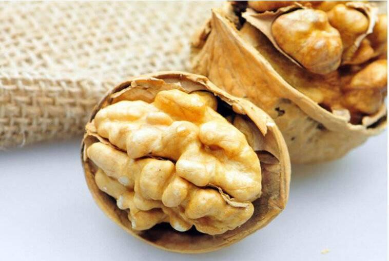 Миндаль, грецкий орех (чили): чилийские экспортеры на российском рынке (годовой отчет usda).