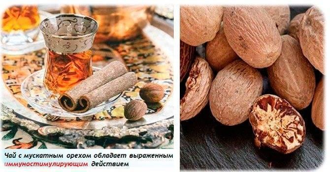 Мускатный орех: состав, применение и противопоказания