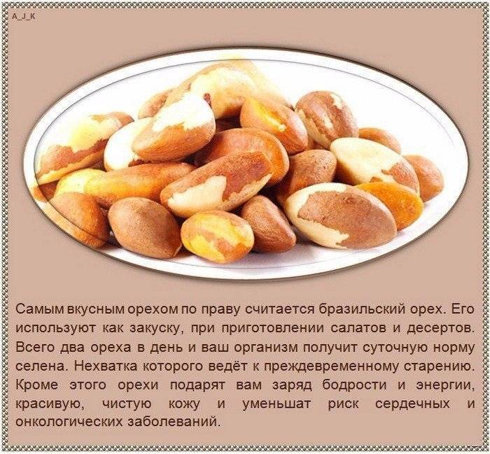 Зачем вымачивать орехи в воде: миндаль, арахис грецкий и кедровый орех