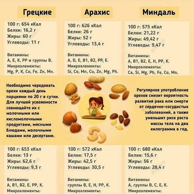 Польза и вред арахиса для мужчин