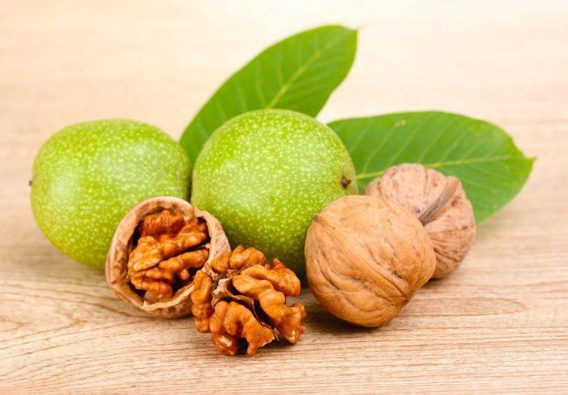 Грецкие орехи: польза и вред для организма мужчины и женщины, показания применения, отзывы