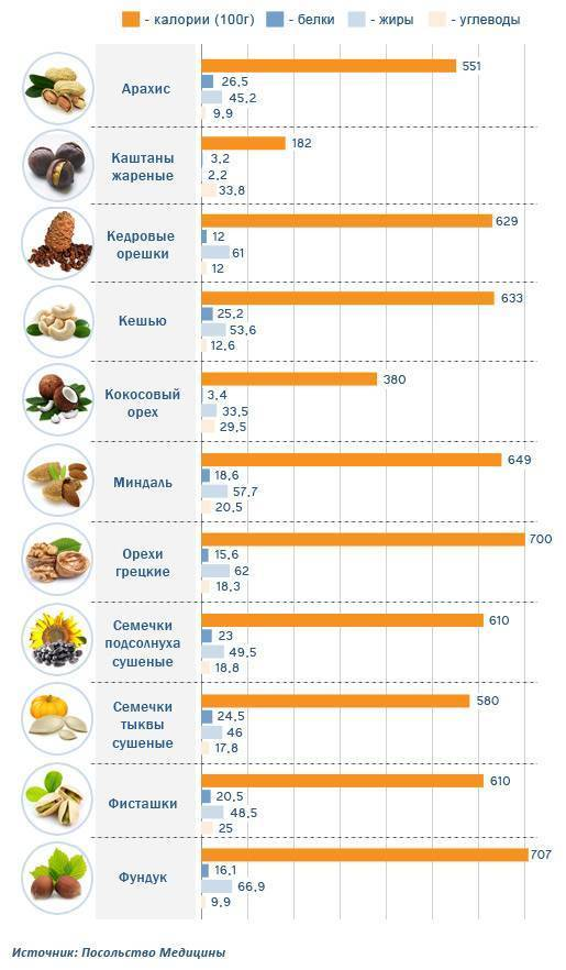 Орех фундук: свойства, калорийность, бжу, польза и вред