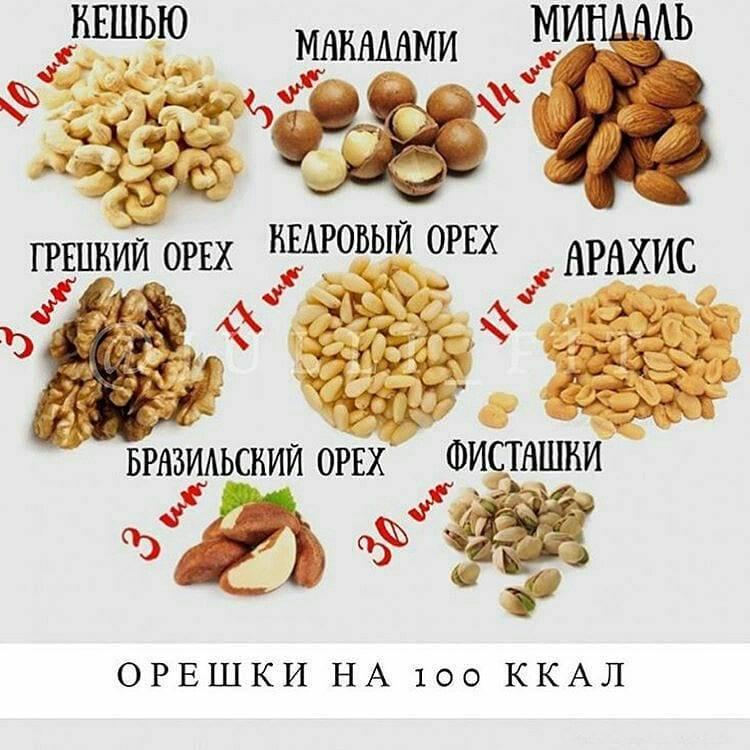 Польза и вред орехов для организма: сколько и каких орехов можно съедать в день |