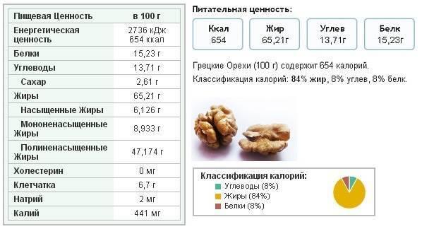 Грецкий орех: польза и вред для организма человека, витамины, сколько можно съесть