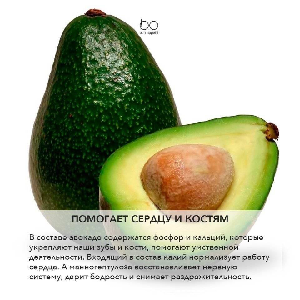 Можно ли есть косточку авокадо и полезна ли она