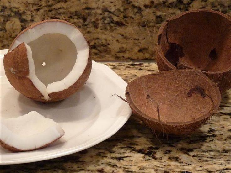 Как открыть кокос: как вскрыть в домашних условиях, чем расколоть кокосовый орех, как разбить без молотка, как почистить легко и правильно разрезать мякоть?