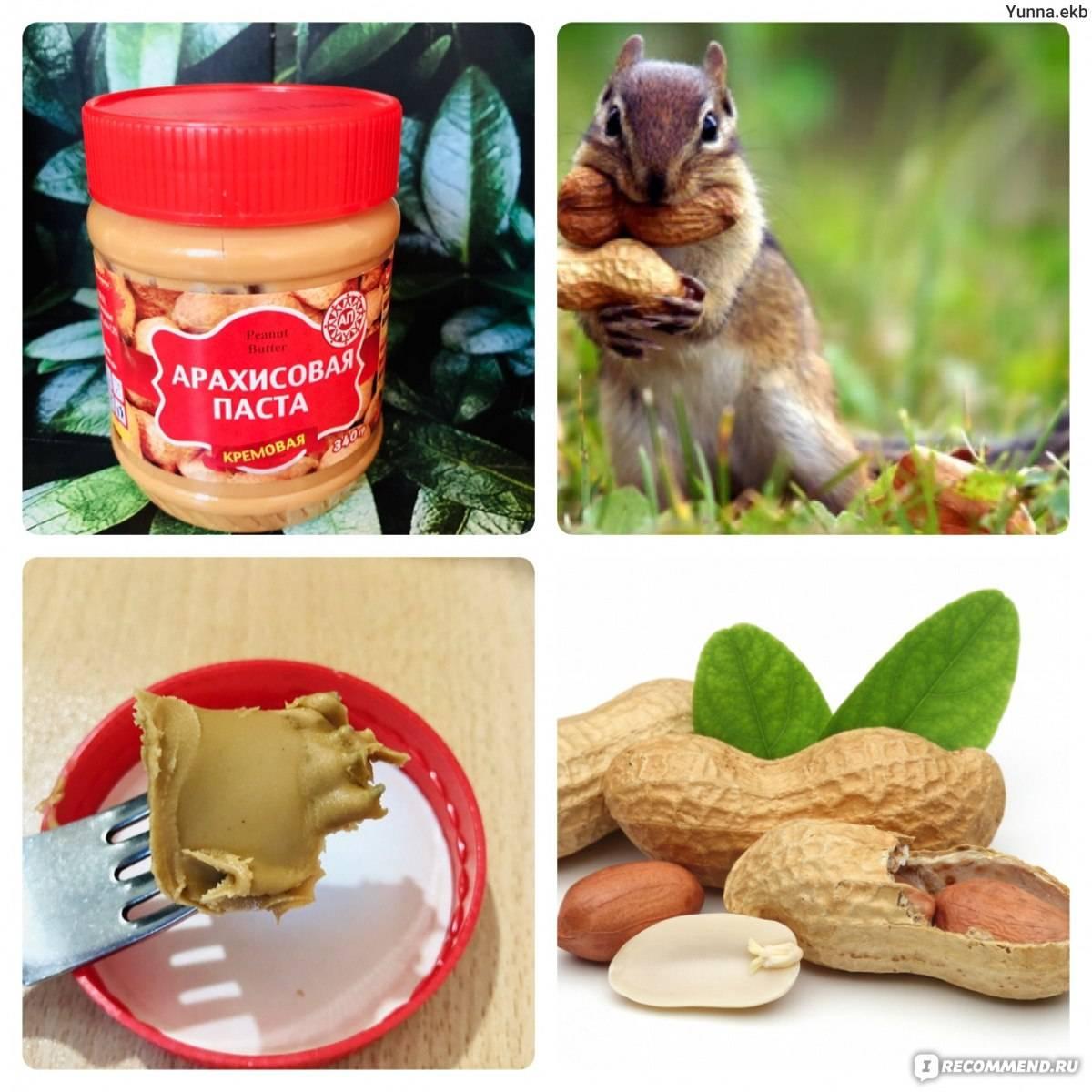 Можно ли при похудении есть арахис