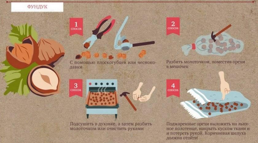 Как чистить грецкие орехи от зеленой кожуры, скорлупы или кожицы, применение разных способов, чтобы расколоть его