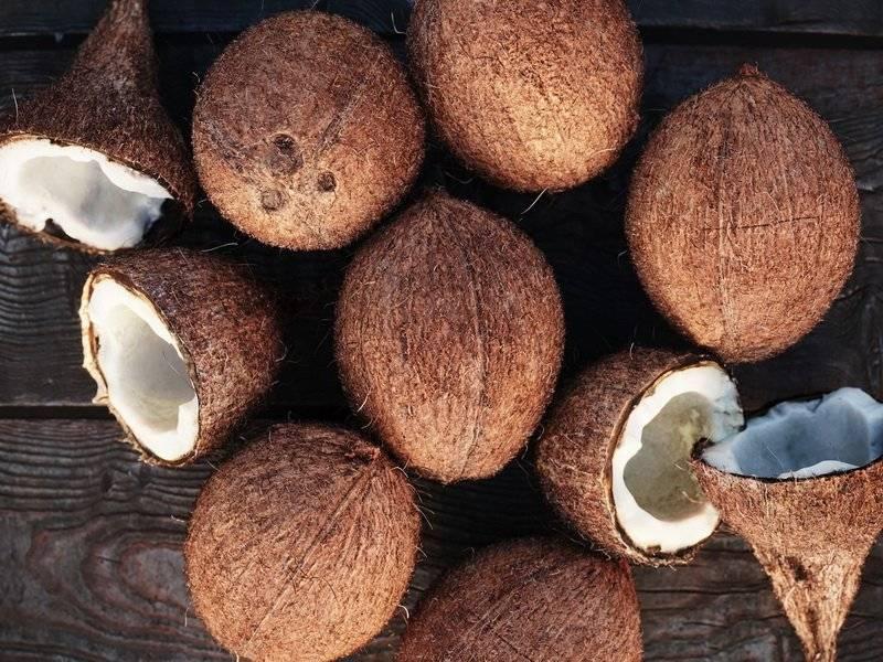 Интересные факты о мякоти кокоса